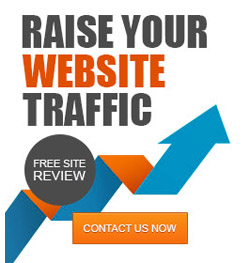 Get Free Site Check for SEO